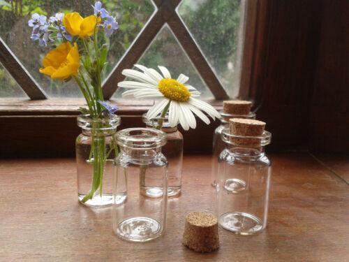 Viales de vidrio 50x Con corcho Planta Botellas en Miniatura 22x50mm Florero//Boda//Joyería//invita a