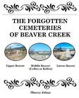 The Forgotten Cemeteries of Beaver Creek by Sherry Johns (Paperback / softback, 2008)