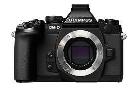 Paypal-Olympus-OM-D-E-M1-Mark-II-EM1II-Body-Digital-Camera-New-Agsbeagle