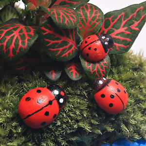10-x-Hanging-Decorative-Ladybirds-Garden-Wall-Ornament-Home-Outdoor-RDNH