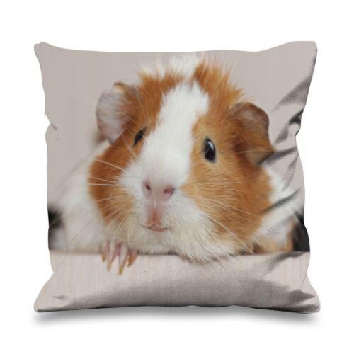 Guinea Pig Face Faux Silk 45cm x 45cm Sofa Cushion Cute Peet Gift
