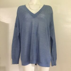 J-Crew-Womens-Top-L-Blue-Thin-Knit-Sweater-100-Merino-Wool-Long-Sleeve-V-Neck