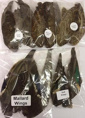1 Pair of Wings - Grouse, Teal, Partridge, Mallard & Woodcock