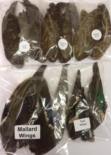 1 Paire de Ailes - Grouse, Teal, Partridge, Colvert & Bécasse