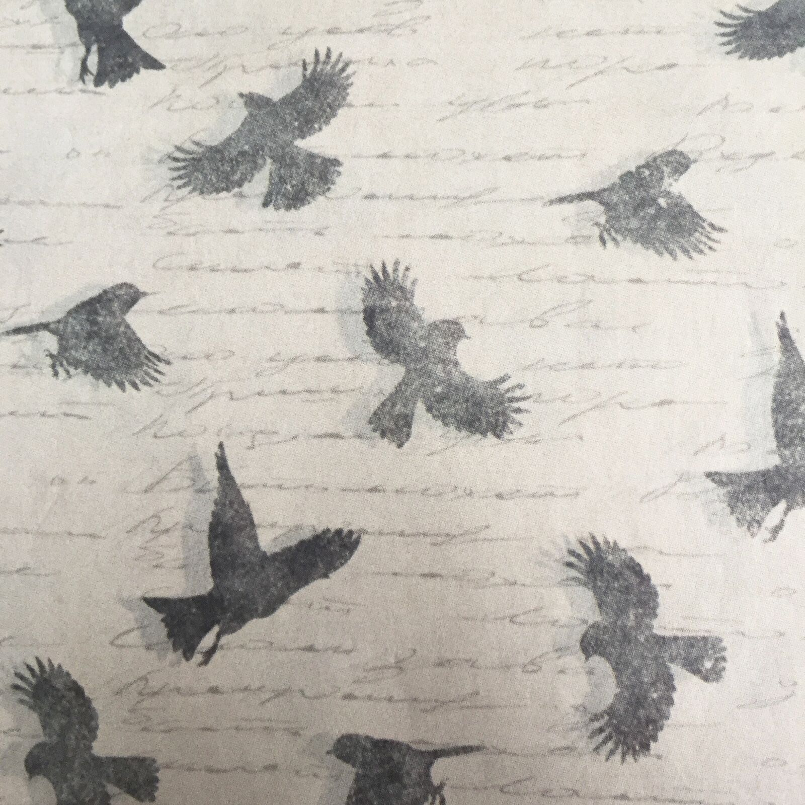 Simple Creative Deco Papers Sketchy Birds /& Hand Drawn Lines Decoupage Paper