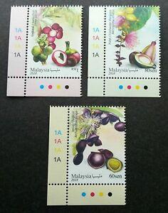 SJ-Malaysia-Medicinal-Plants-IV-2018-Fruits-Food-Flower-stamp-plate-MNH