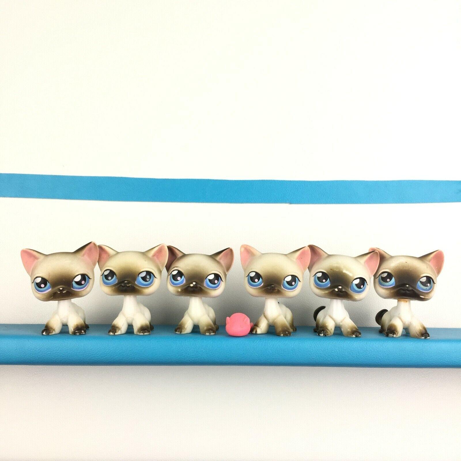 Lot 6 Authentic Littlest Pet Shop Cat Short Hair Kitty Original LPS