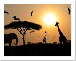 Animal-Silhouettes-Over-Sunset-On-Art-Print-Home-Decor-Wall-Art-Poster-C