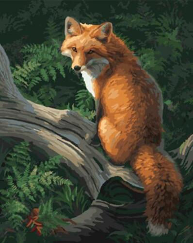 Mountain Fox no frame Paint By Numbers