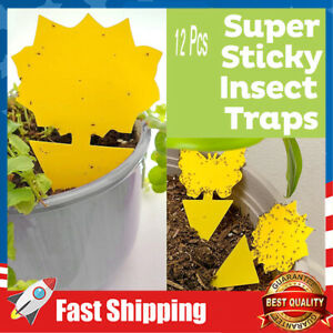 Fly Clear Window Fly Traps Bug Fly Killer Window Decal Non-Toxic,12 Pieces