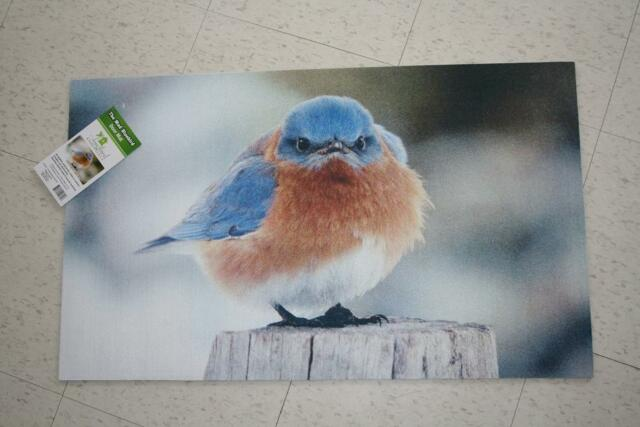 The Mad Bluebird  Doormat, Rug Indoor Outdoor
