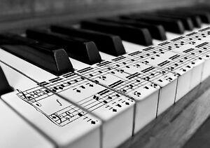 Touches Du Piano Notes De Musique Poster Noir Blanc Wall Art Print