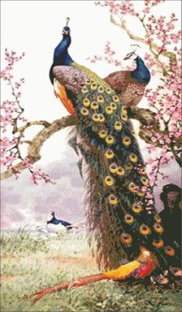 """NEW Cross Stitch Kits """"Beautiful peacock """""""