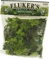 Fluker's Repta Vines-english Ivy, New, Free Shipping on Sale