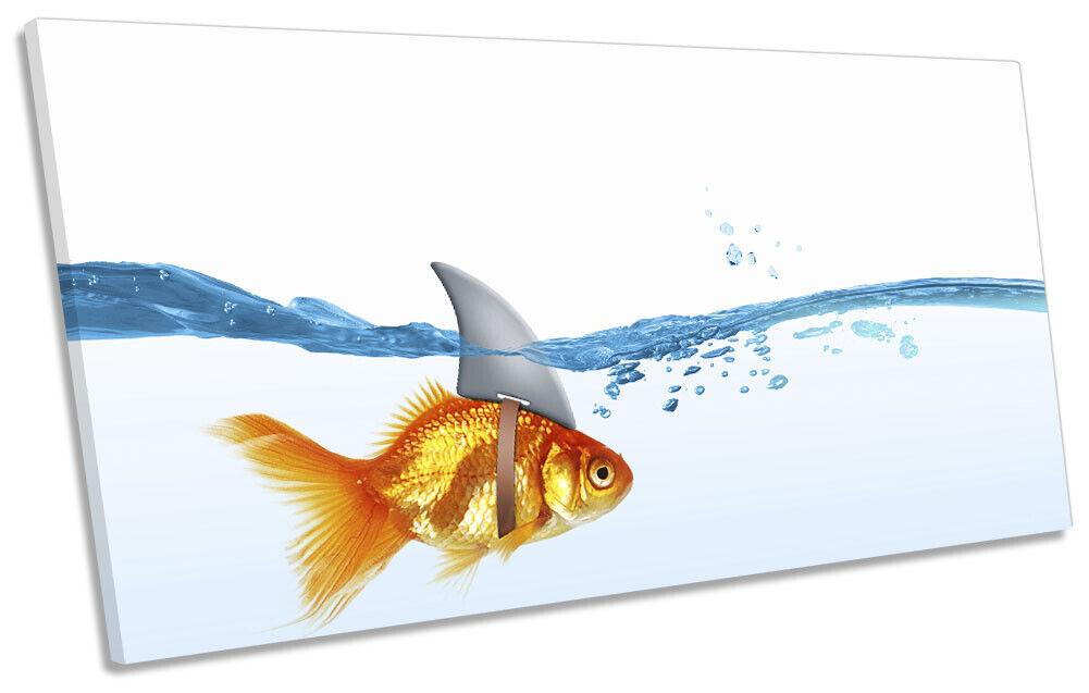 Goldfish Shark Fin Bathroom Picture PANORAMIC CANVAS WALL ART Print Orange