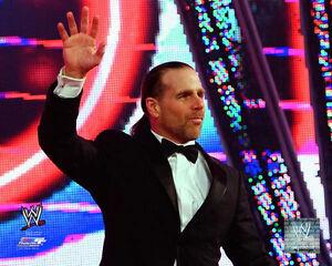 WWF Hall of Fame 2020. S-l300