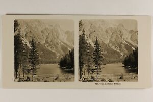 Tirolo Montagne Alpes Natura c1905 Foto Stereo Vintage Analogica
