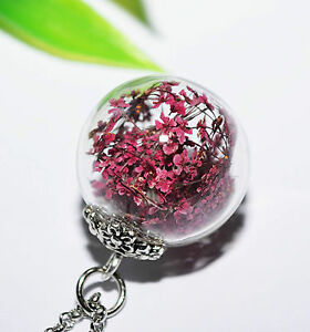 Getrocknete Blüten 3d glaskugel anhänger halskette glas kette getrocknete blüten blumen