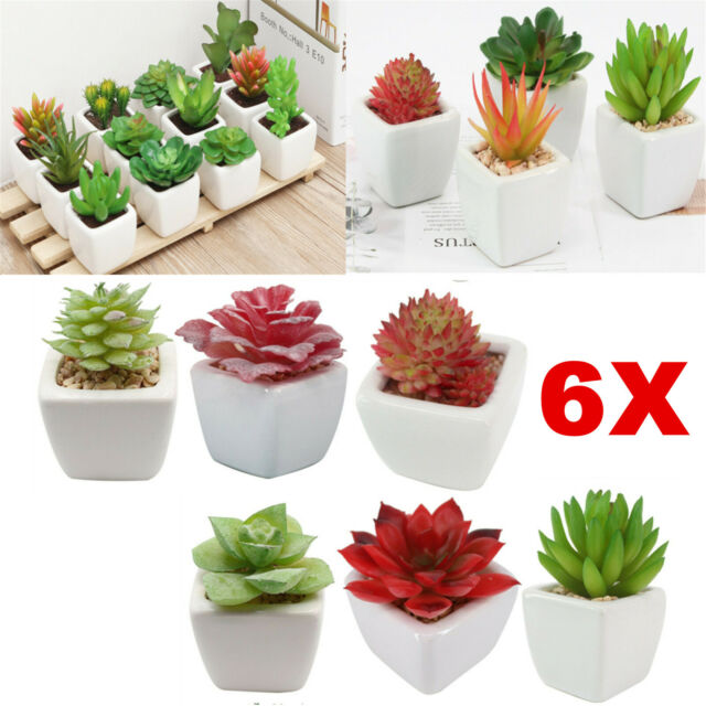 6pcs Artificial Succulent Potted Plants, Outdoor Artificial Cactus Plants