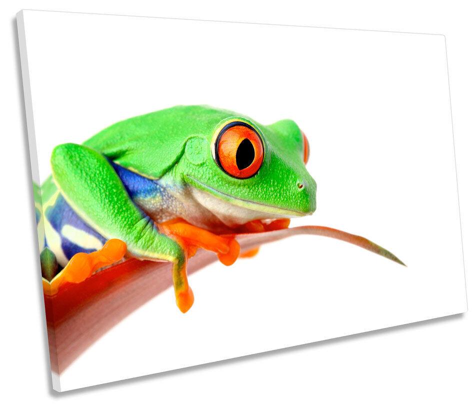Grün Frog Picture SINGLE CANVAS WALL ART Print