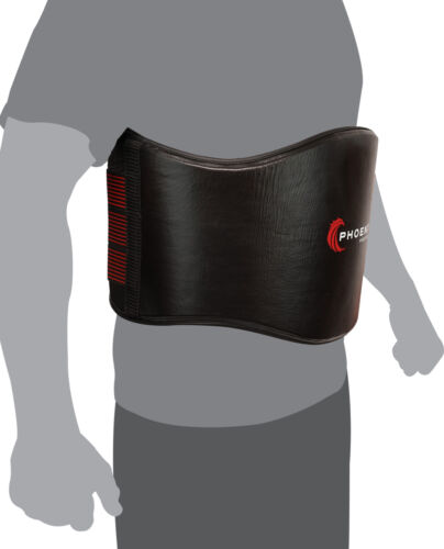 Flight Belly Protector for MMA Sparring /& Training Phoenix Fight Gear
