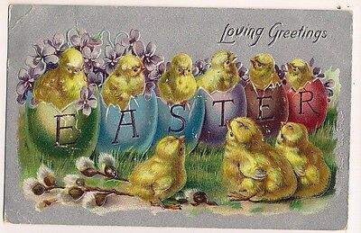 Raphael Tuck Easter Postcard Series 701 Chicks Hatch fromn colored eggs Violets