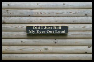 did i just roll my eyes out loud Vintage Retro vintage old style sign Antique