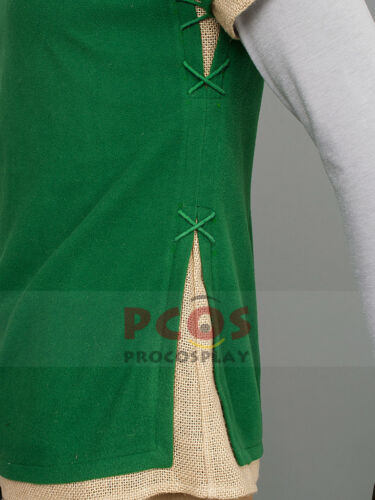 Best The Legend of Zelda Link Cosplay Costume