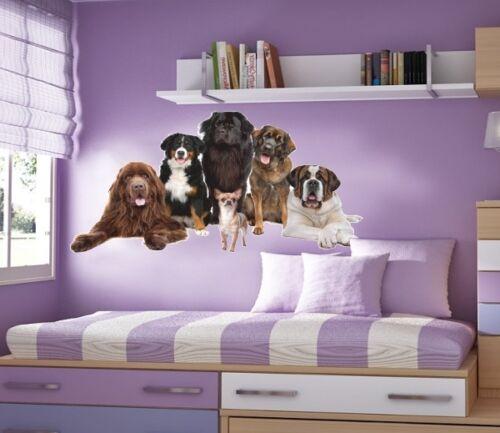 WALL STICKERS Big dogs /& Chihuahua Vinyl Decal Mural Sticker Children Sticker