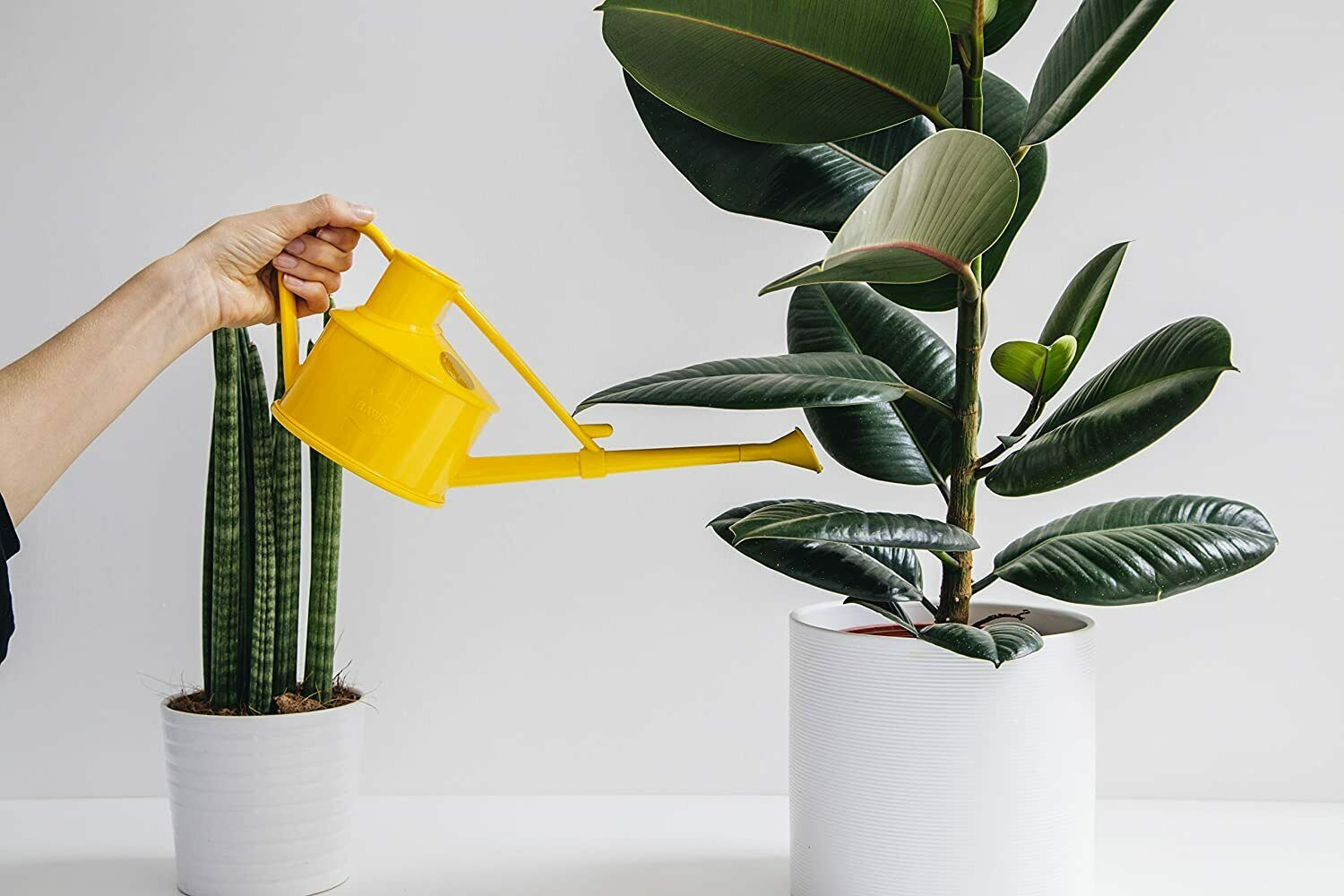 0.7L Haws Handy Indoor House Plant Plastic Watering Can Fine Spray Rose Yellow