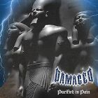 Purified in Pain by Damaged (CD, Feb-2001, Rotten Records)