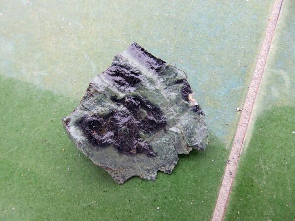 "Bueno Fosiles Trilobites"" Fabulosos Estromatolitos Del Precambrico De Madagascar- 8a17 Precio Moderado"