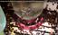 Bienenfuetterung-Fuettern-und-Traenken-von-Bienen-Bienentraenke-Imkerei-Imker Indexbild 3