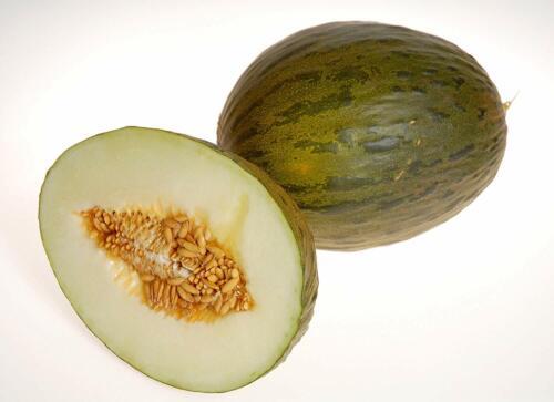 semilla melon MELON VERT D/'ESPAGNE BIO watermelon seed 20 graines