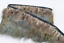 Green Tipped Pheasant Feather Fringe Ribbon Trim Price for 30cm DIY Craft