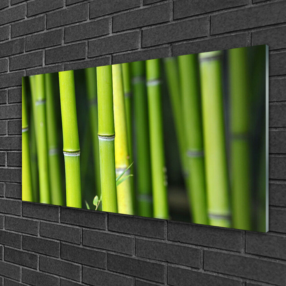 Image sur verre Tableau Impression 100x50 Nature Bambou