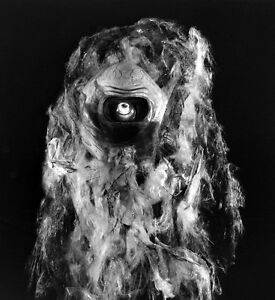 It came from outer space monster 14 x 11 photo print ebay for Watch it came from outer space