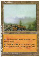 Brushland // NM // Anthologies // engl. // Magic the Gathering