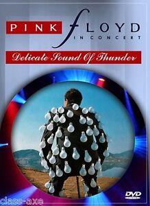 pink floyd el delicado sonido del trueno