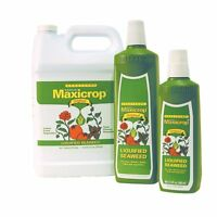 Maxicrop Liquid Seaweed Qt , New, Free Shipping on Sale
