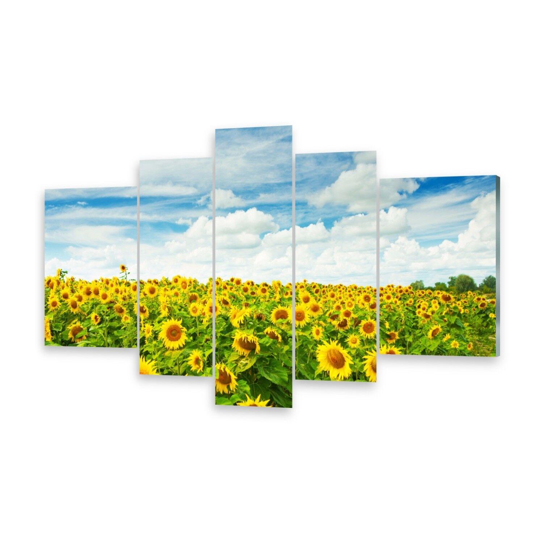 Mehrteilige Bilder Acrylglasbilder Wandbild Feld SonnenBlaumen