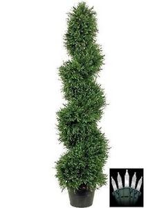 ... -Rosemary-Spiral-Christmas-Tree-Plant-Outdoor-Bush-Holiday-Lights