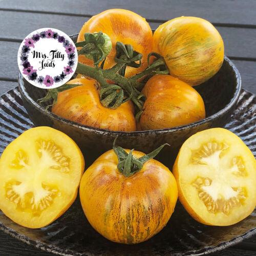 ‼️NEU BUSCHTOMATE GOLDEN TIGER Tomatensamen 10 Samen frische Ernte 2018 Sorte