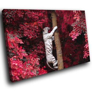 White-Tiger-Pink-Tree-Red-Funky-Animal-Canvas-Wall-Art-Large-Picture-Prints