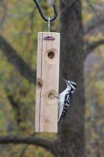 Kettle Moraine Solid Cedar Log Suet Plug Woodpecker Feeder 8318CDR Hanging