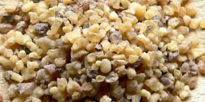 Incense-900gms-Frankincense-Pea-Size-Natural-Resin-Dhoop-Incense-Gum-olibanum