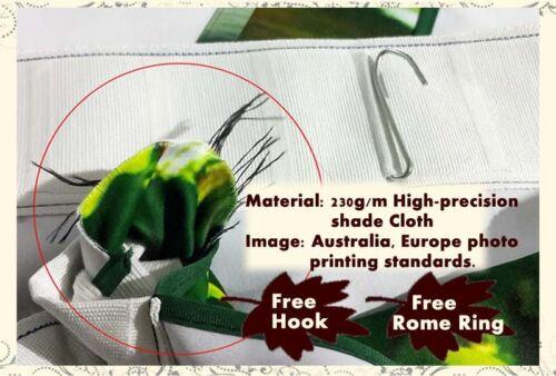 Spider Man Climb Build 3D Curtains Blockout Photo Printing Curtains Drape Fabric