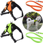 Adjustable No Pull Pet Dog Vest Harness Leash Collar Set - Small/Medium/Large/XL