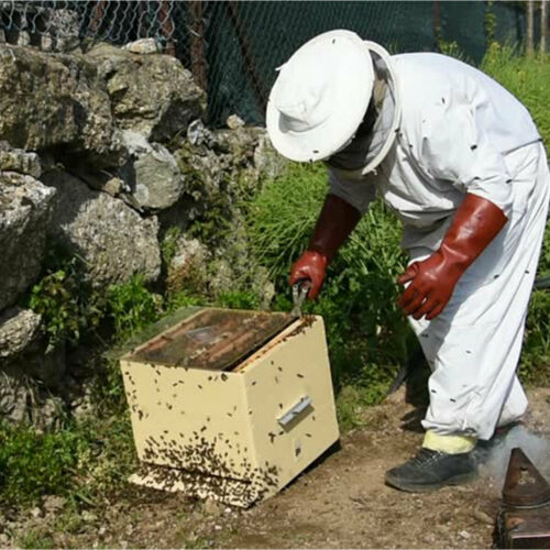 XXL XL L Professional Cotton Full Body Beekeeping Bee Keeping Suit w// Veil Hood