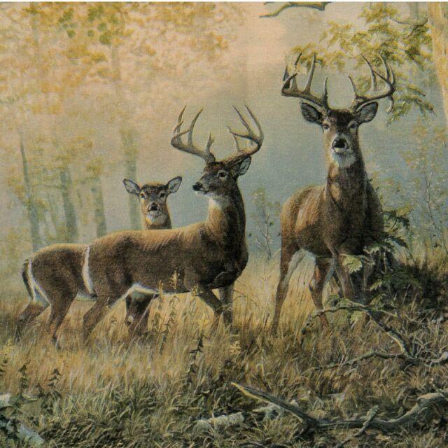 Deer Herd Wallpaper Border